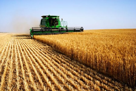 Impact of El Nino on Agriculture